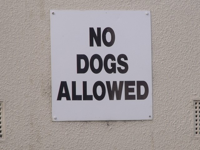 Remember - at no time ... NO DOGS ALLOWED ON SCHOOL PROPERTY